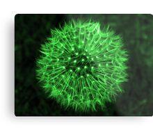 Dandelion Green Metal Print