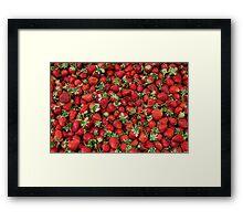 Ripe Strawberries Framed Print