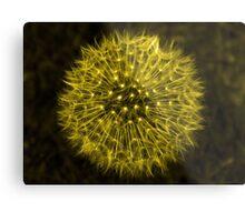 Dandelion Yellow Metal Print