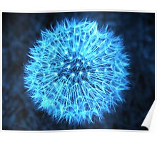 Dandelion Electric Blue Poster