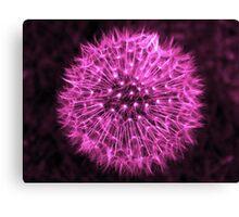 Dandelion Violet Canvas Print