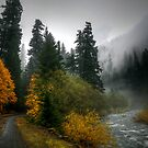 Where The Road Leads You by Charles & Patricia   Harkins ~ Picture Oregon