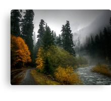Where The Road Leads You Canvas Print