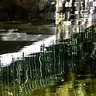 Blades submerged by Edgar Laureano