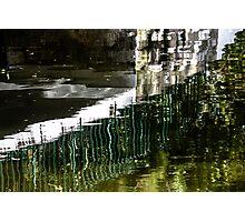 Blades submerged Photographic Print