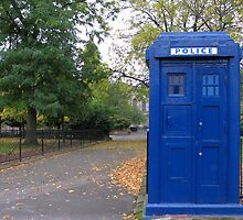 Police box by Loustalot