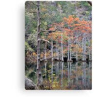Autumn In The Cypress Swamp Canvas Print