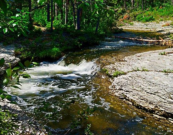 Roadside creek along the MacKenzie Hishway by Yukondick