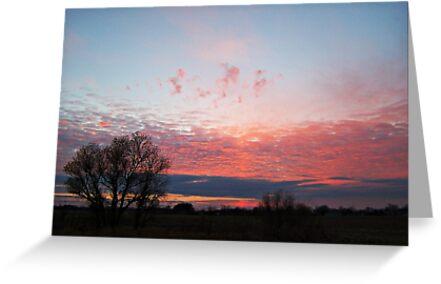 Pastel Twilight by Greg Belfrage