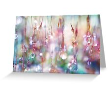 Rainbow Rain Catcher Greeting Card