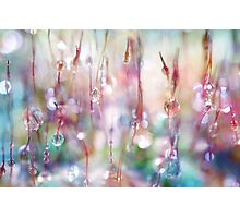 Rainbow Rain Catcher Photographic Print