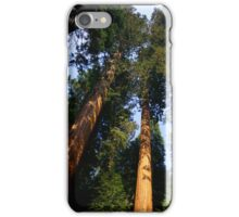 Phone Case Collection: Tall Trees iPhone Case/Skin