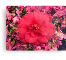 Vibrant flower Metal Print