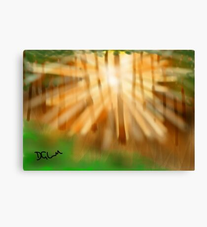 Morning forest light Canvas Print