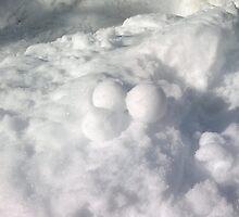 Snow Balls or  Ice Creams by ruirosario
