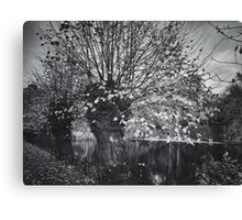 Ghost in the willow Canvas Print