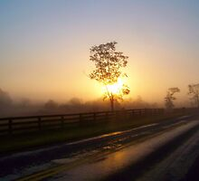 Foggy Sunrise by James Brotherton