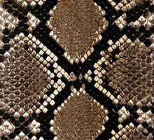Snake Skin iPhone 5 case by Jnhamilt