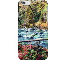 Pacific Northwest Wonderland iPhone Case/Skin