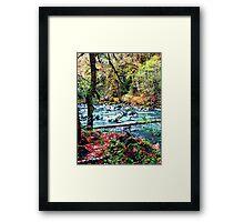 Pacific Northwest Wonderland Framed Print
