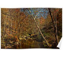 Auburn Autumn Poster