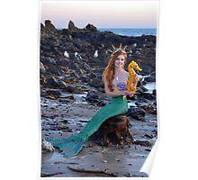 A Mermaid's Little Friends Poster