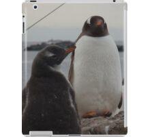 Proud Penguins iPad Case/Skin