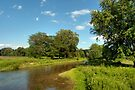 Blue Skies Over Chillisquaque Creek in Montandon County by Gene Walls