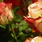 TO YOU MY FRIENDS WHO LOVE FLOWERS -- TO YOU MY FRIENDS ROSES FOR  CHRISTMAS  DALL'ITALY !---VETRINA RB EXPLORE 13 NOVEMBRE 2012 !!!! by Guendalyn