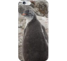 Penguin Baby iPhone Case/Skin