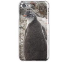 Penguin Baby iPhone Case/Skin