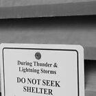 Do Not Seek Shelter by DangerousDreams