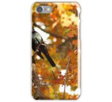 The Time of The Singing Bird Has Come... iPhone Case/Skin