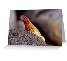 Lava Lizard Greeting Card
