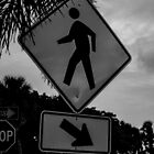 Pedestrian Crossing by Parker Bass