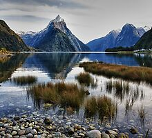 Milford Sound Morning by meredithnz