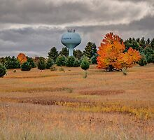 Autumn Arrives At Waupaca by Thomas Young