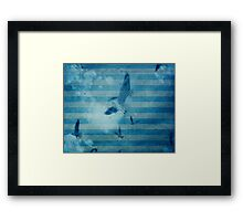seagull in cyan 2 Framed Print