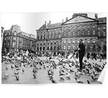 Pigeon whisperer Poster