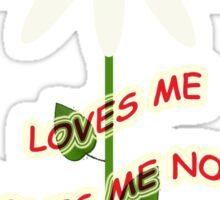 Loves me - Loves me not Sticker