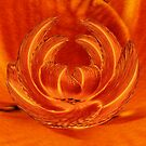 Phoenix Rising Lily by © CK Caldwell IPA