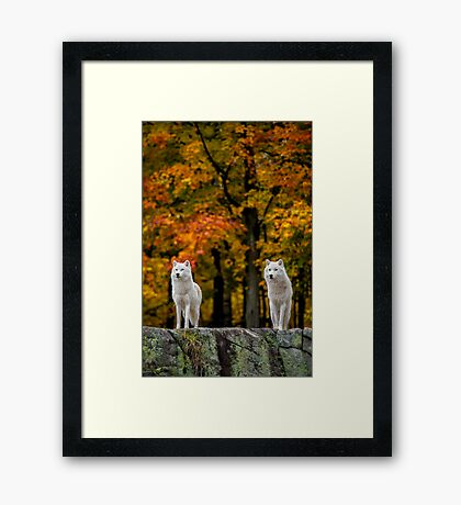 Above and beyond Framed Print