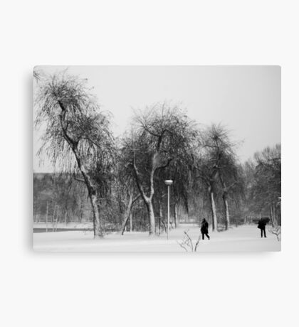 Braving the snowstorm Canvas Print