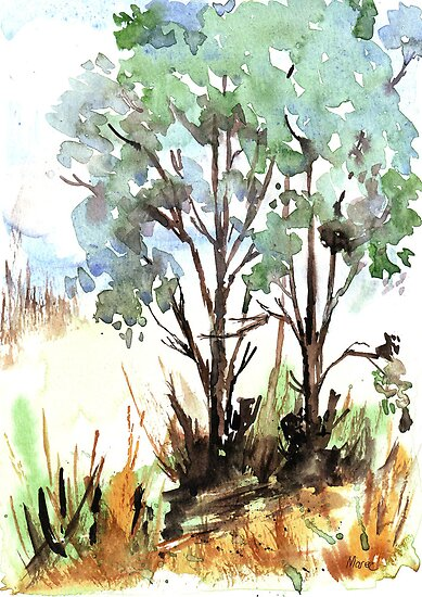 Summer Blue gums by Maree  Clarkson