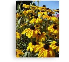 Yellow! Canvas Print