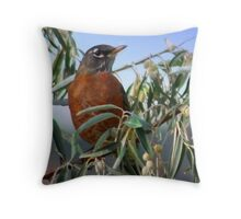 Huffy Throw Pillow