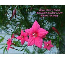 Floral Choir Photographic Print