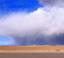 Life On The Plains...Marsing, Idaho by trueblvr