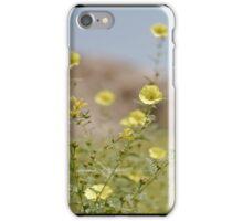 desert colours iPhone Case/Skin