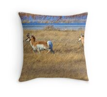 Prairie Bounce Throw Pillow